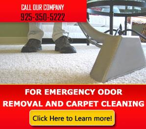 Blog | How to Perform Dry-Foam Carpet Cleaning